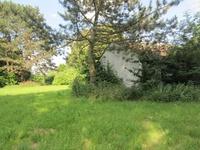 Grundstück (3)